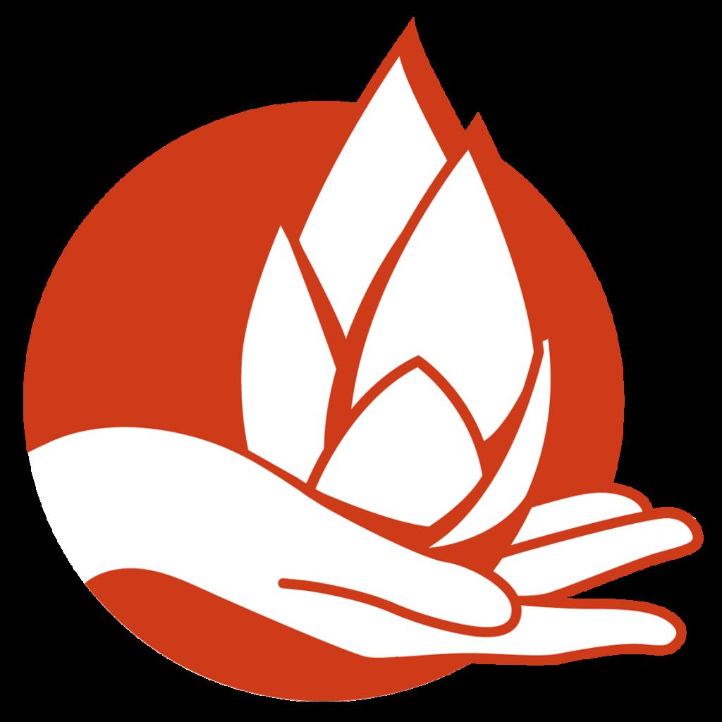 lotuscolour