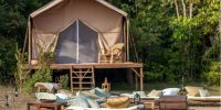 Luxury camp in the jungle