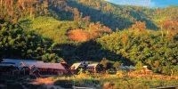 Laos Luang Say Mekong Cruise and Lodge